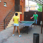 tenissnii-stol-v-gostinize