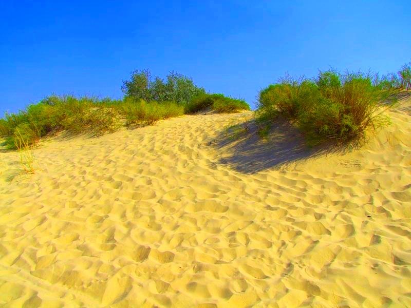 Попасть на эти пляжи можно